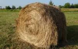 В сарае было 90 кг сена в первый месяц