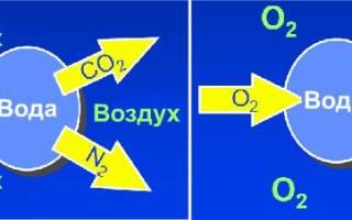 Как насытить воду кислородом в домашних условиях
