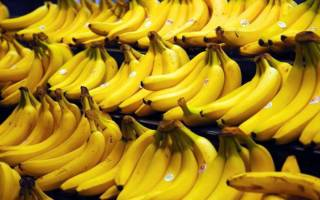 Где растут бананы на дереве или на кусте