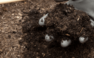 Как приготовить правильно компост на даче
