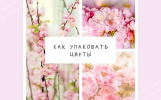 Как завернуть цветы в пленку пошаговое