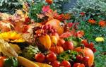 Как правильно перекопать землю осенью