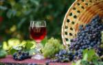 Как приготовить вино из молдовы в домашних условиях