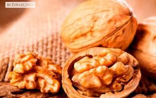 Для чего полезен грецкий орех для женщин