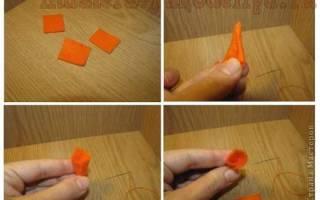 Из чего кроме морковки можно сделать нос снеговику 100 к 1 ответ