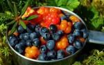 Как называется ягода похожая на клюкву