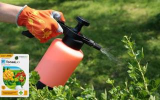 Как использовать топаз для растений
