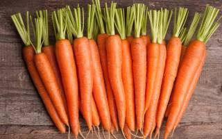 Как подготовить грядку для моркови осенью