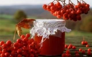 Как выжать сок из красной рябины