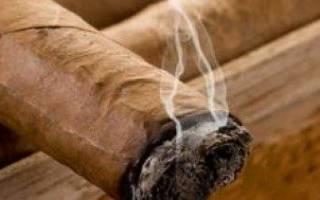Как выглядит спелый лист табака