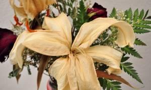 Как покрасить сухоцветы в домашних условиях