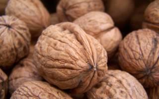 Как высушить орехи в домашних условиях