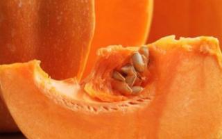 Как определить сорт тыквы по внешнему виду