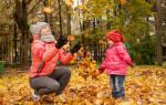 Как падают листья с деревьев