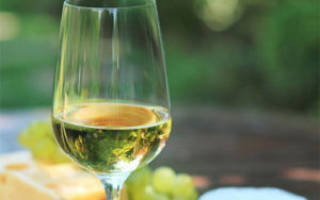 Как делать белое вино в домашних условиях