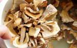 Зачем замачивать грибы перед варкой