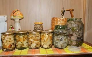 Засолка грибов на зиму в банках ассорти