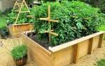 Как приготовить эм компост