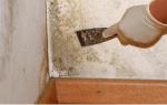 Как обработать медным купоросом подвал