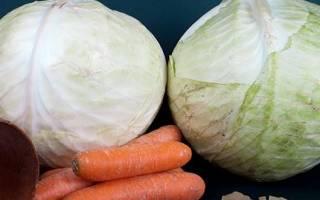 Как приготовить квашеную капусту с морковью