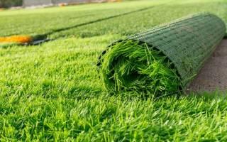 Как правильно уложить искусственный газон