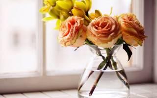 Зачем розы кладут в ванну