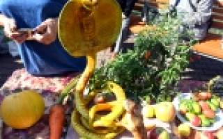 Выставка цветов и овощей в сельском клубе