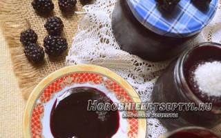 Ежевика лесная с сахаром на зиму без варки