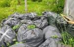 Как приготовить компост в мешках для мусора