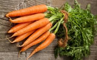 В какое время копать морковь