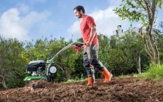Как правильно пахать землю культиватором
