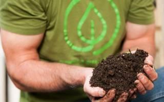 Как правильно заложить компостную кучу осенью