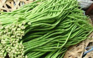 Как готовить вигну овощную