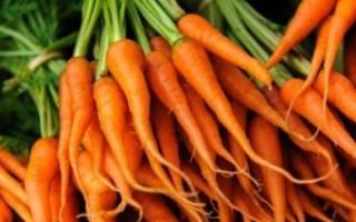 Блюда из моркови для детей 1 года