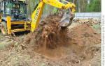 Как избавиться от корней клена на участке