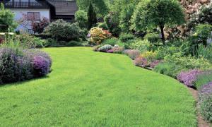 Как быстро сделать перегной из травы