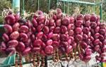 Как определить настоящий ялтинский лук