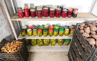 Как подготовить подвал к хранению овощей на зиму