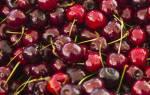 Как правильно много вишен или много вишни