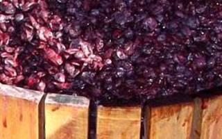 Как делать вино из жмыха