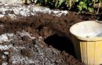 Как известковать почву и когда
