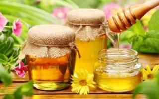 Как приготовить трепанг на меду