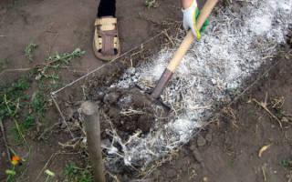 Как обработать землю известью осенью