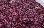 Как приготовить второе вино