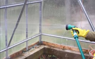 Как вымыть теплицу из поликарбоната осенью