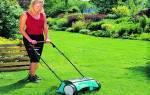 Как осенью подкормить газон