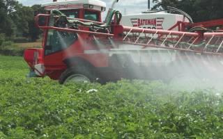 Как избавиться от травы на картошке